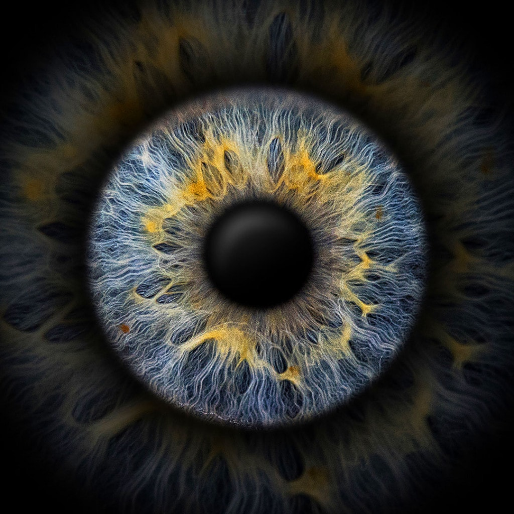 Irisfotografie