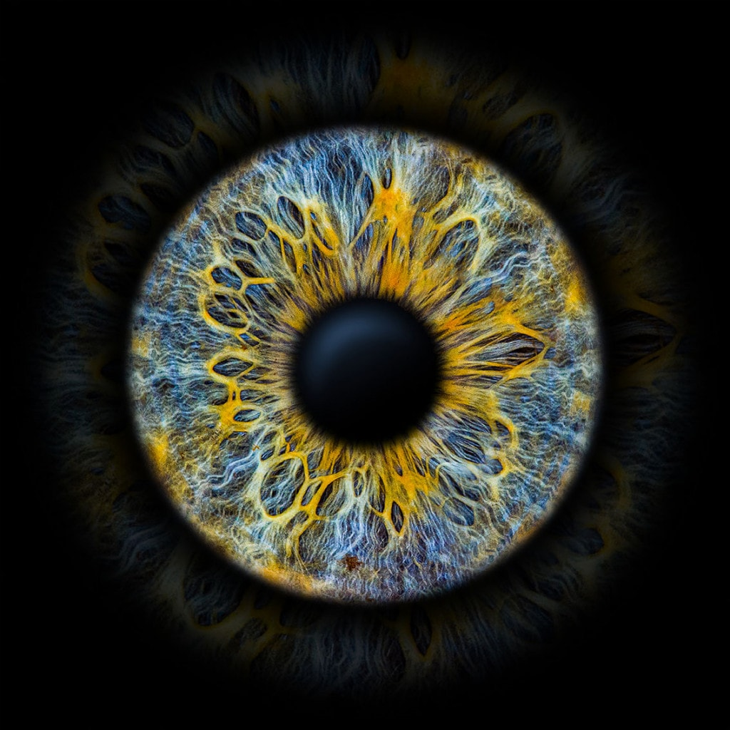 IrisFoto blau gelb